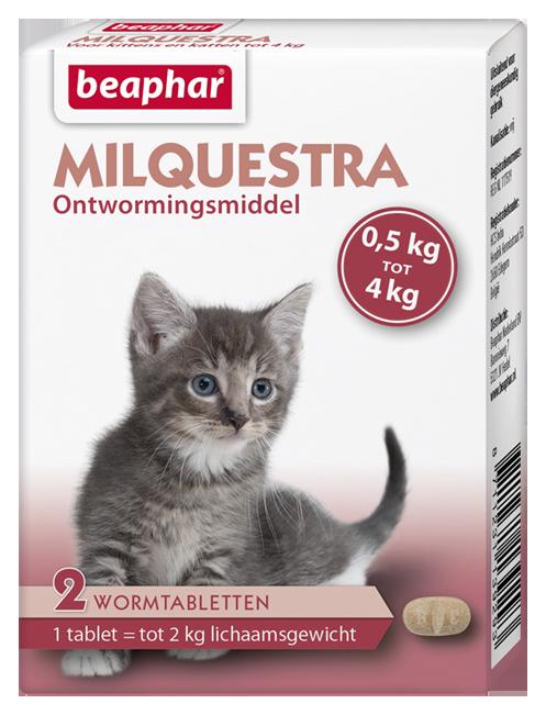 Beaphar Milquestra kitten