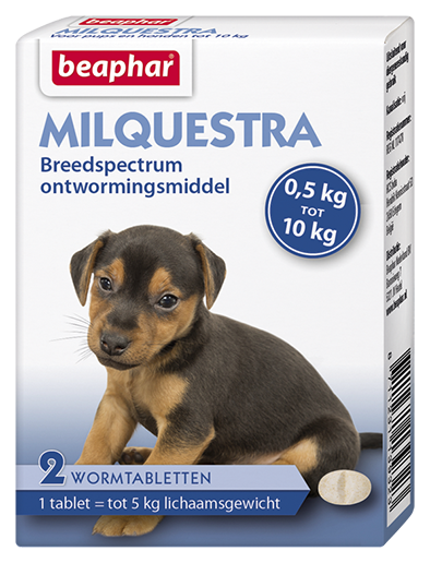 Pups ontwormen