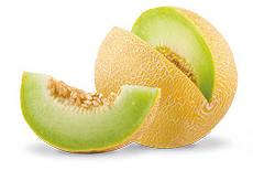 NutriSupport Meloen